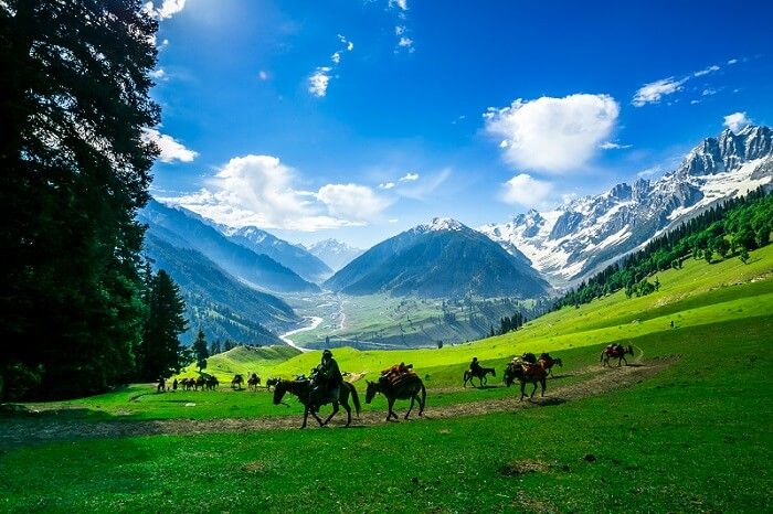 Pony Ride Excursions - Countryside Kashmir